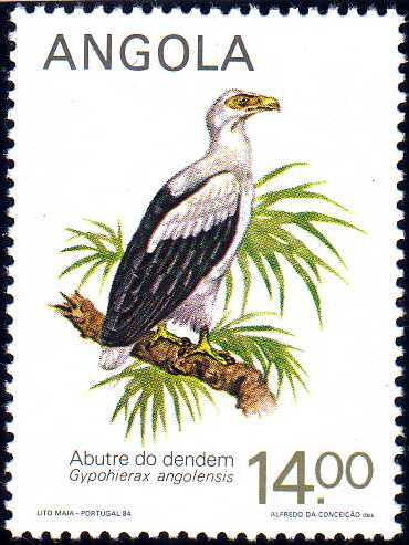 Angola 1984 Local Birds b.jpg
