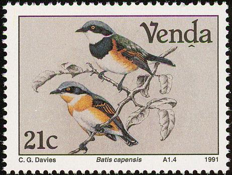 Venda 1991 Birds