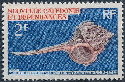 New Caledonia 1969 Sea Shells