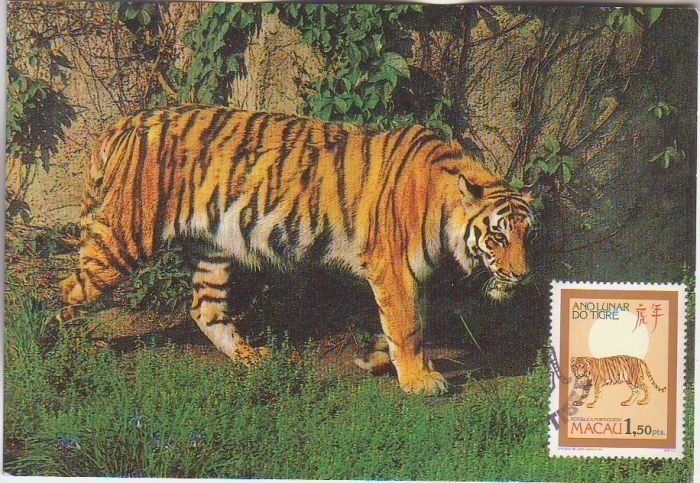 Macao 1986 Year of the Tiger m.jpg