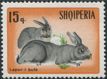 Albania 1967 Hares and Rabbits