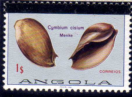Angola 1981 Sea Shells Overprinted a.jpg