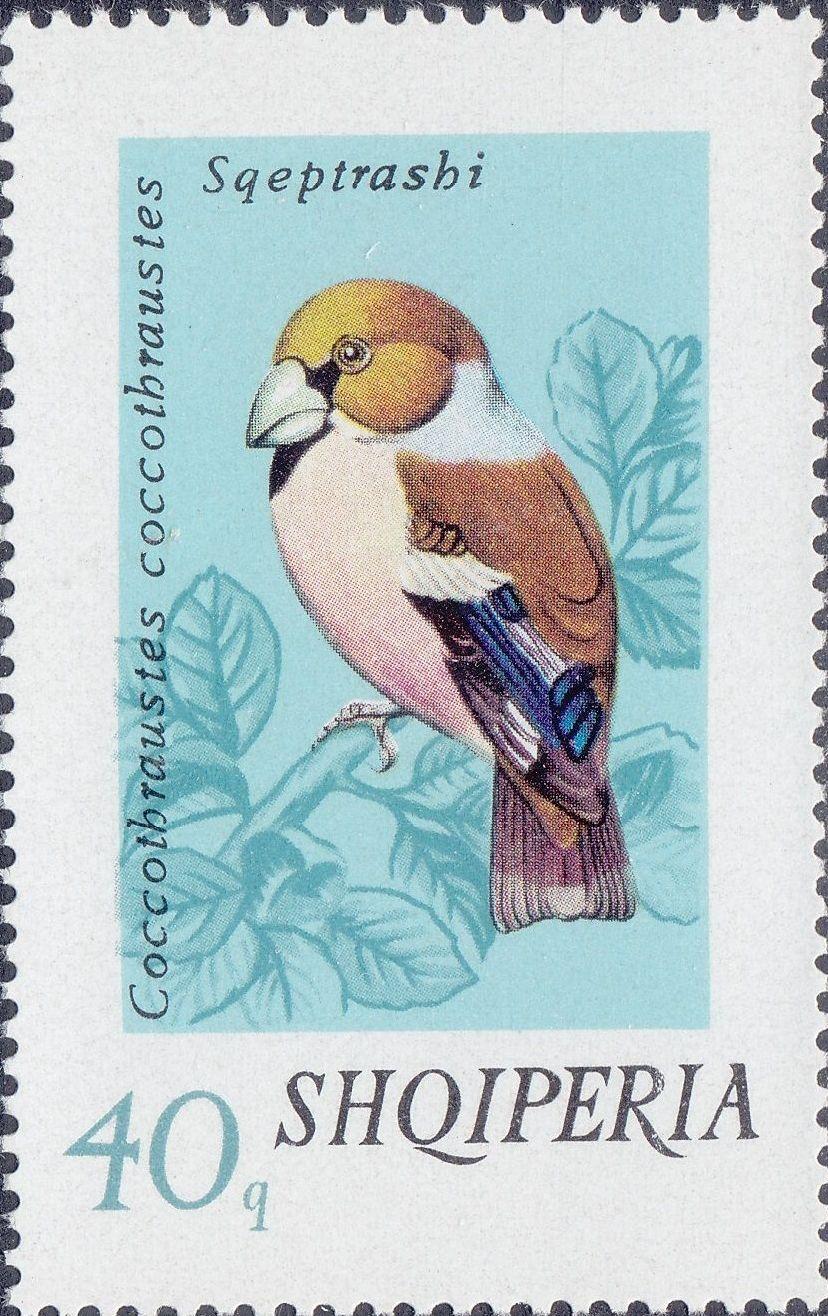 Albania 1974 Song Birds e.jpg