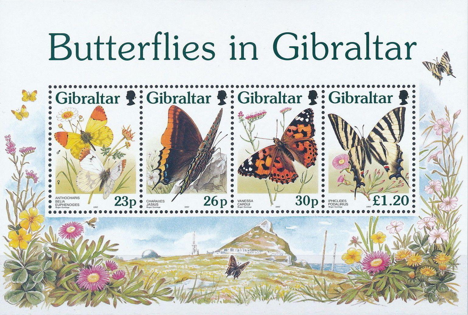 Gibraltar 1997 Butterflies in Gibraltar