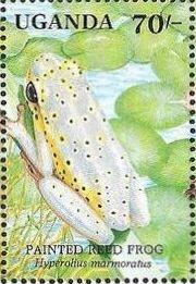 Uganda 1991 Animals of Uganda's Wetlands j.jpg
