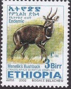 Ethiopia 2002 Menelik's Bushbuck v.jpg
