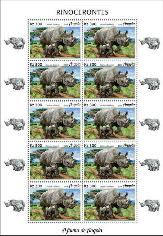Angola 2018 Wildlife of Angola - Rhinos Sd.jpg