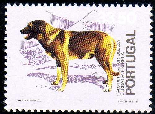 Portugal 1981 50th anniversary of the Portuguese Kennel Club f.jpg