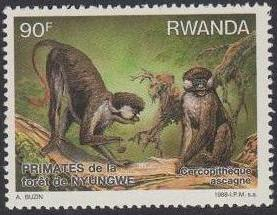 Rwanda 1988 Primates of Nyungwe Forest d.jpg