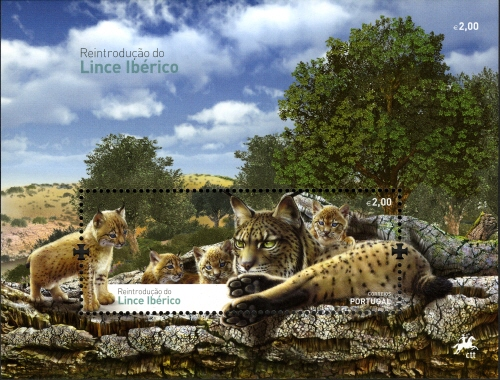 Portugal 2015 Reintroducing the Iberian Lynx into Portugal SSa.jpg