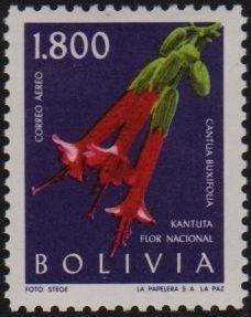 Bolivia 1962 Flowers g.jpg