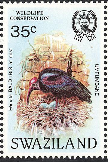 Swaziland 1984 WWF Southern Bald Ibis d.jpg