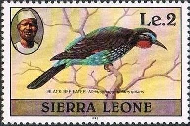 Sierra Leone 1982 Birds from 1980 Imprint 1982 m.jpg
