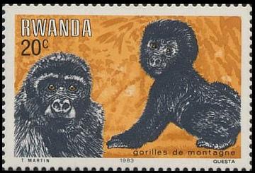 Rwanda 1983 Mountain Gorilla