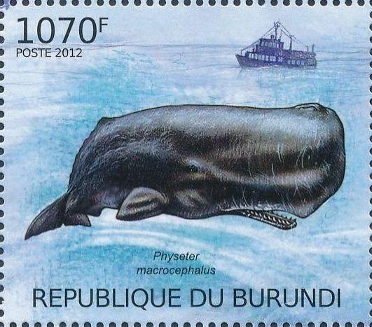 Burundi 2012 Protection of Nature - Save the Whales e.jpg