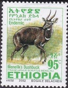 Ethiopia 2002 Menelik's Bushbuck s.jpg