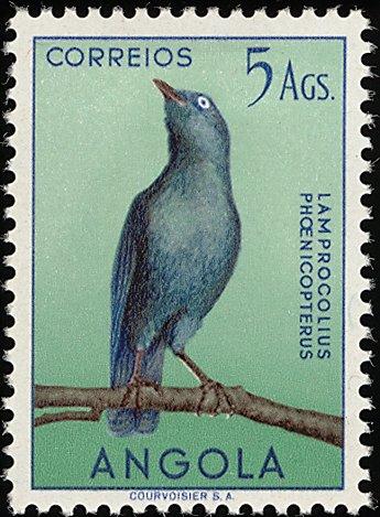 Angola 1951 Birds from Angola n.jpg