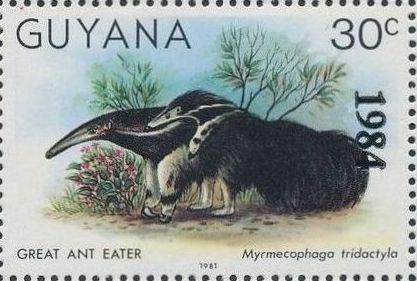 Guyana 1984 Wildlife (Overprinted 1984) i.jpg