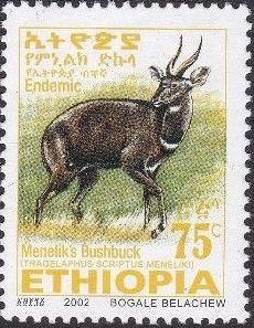Ethiopia 2002 Menelik's Bushbuck o.jpg