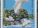 Romania 1984 WWF - Pelicans of the Danube Delta