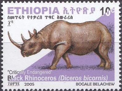 Ethiopia 2005 Black Rhinoceros b.jpg