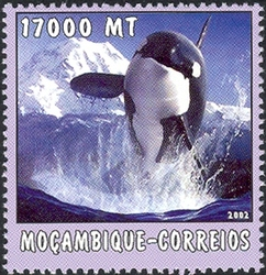 Mozambique 2002 The World of the Sea - Whales 1 e.jpg