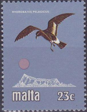 Malta 1981 Birds d.jpg