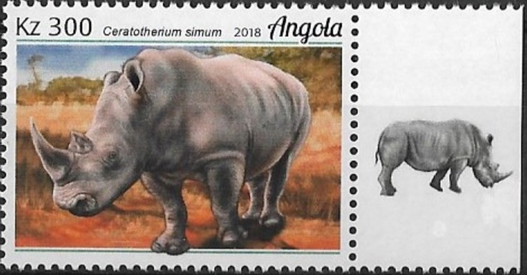 Angola 2018 Wildlife of Angola - Rhinos