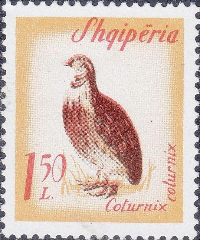 Albania 1965 Migratory Birds g.jpg