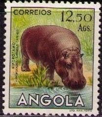 Angola 1953 Animals from Angola r.jpg
