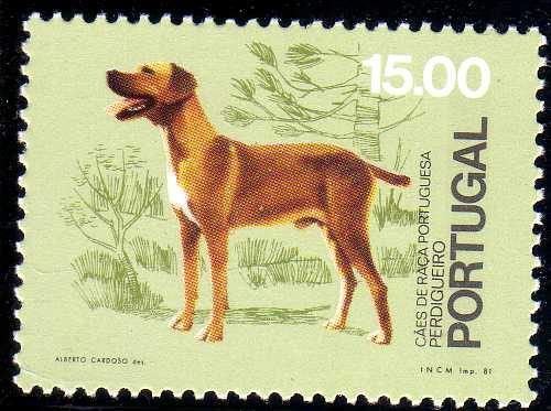 Portugal 1981 50th anniversary of the Portuguese Kennel Club c.jpg