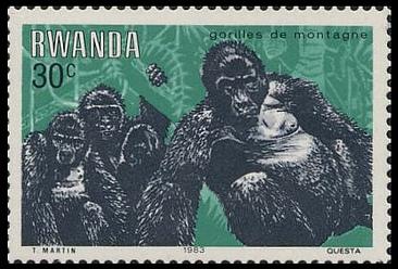 Rwanda 1983 Mountain Gorilla b.jpg