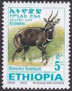 Ethiopia 2002 Menelik's Bushbuck a.jpg