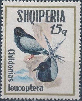 Albania 1973 Sea Birds b.jpg