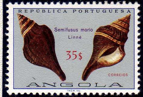 Angola 1974 Sea Shells r.jpg