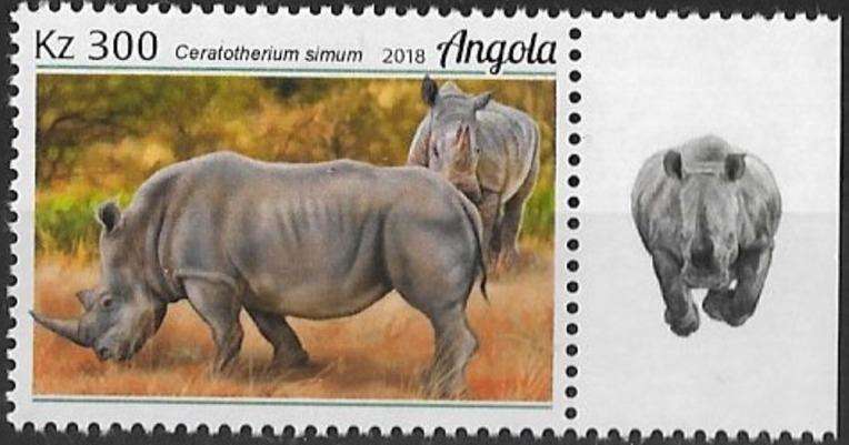 Angola 2018 Wildlife of Angola - Rhinos b.jpg