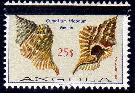 Angola 1981 Sea Shells Overprinted j.jpg