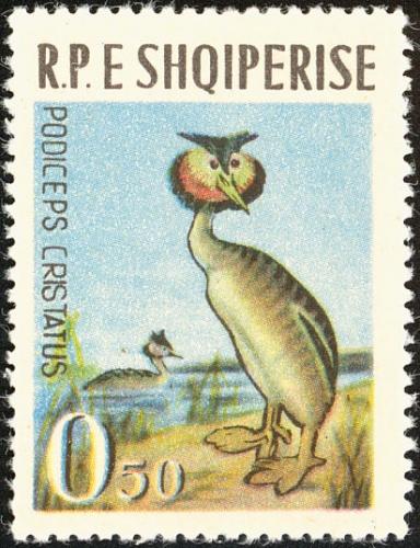 Albania 1963 Birds