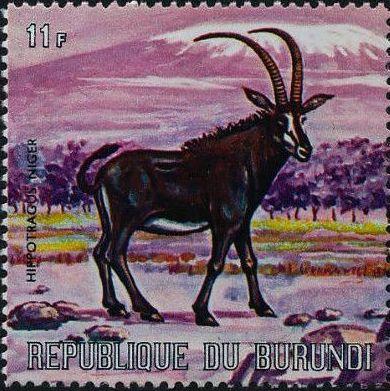 Burundi 1971 Animals n.jpg