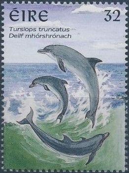 Ireland 1997 Marine Mammals b.jpg