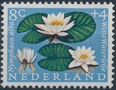 Netherlands 1960 Surtax for Child Welfare - Flowers c.jpg