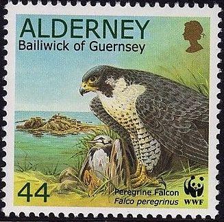 Alderney 2000 WWF Peregrine Falcon e.jpg