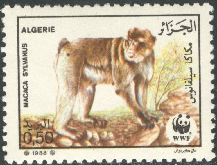 Algeria 1988 WWF - Barbary Macaque