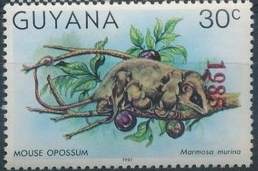 Guyana 1985 Wildlife (Overprinted 1985) j.jpg