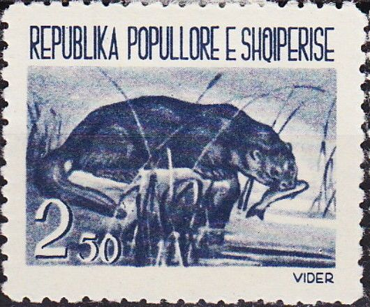 Albania 1961 Native Animals