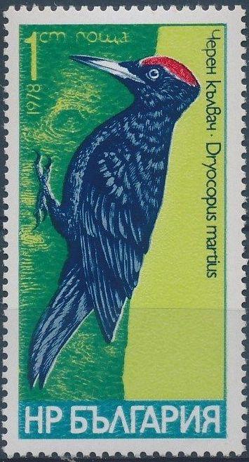 Bulgaria 1978 Woodpeckers