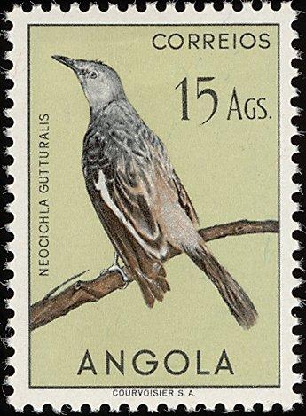 Angola 1951 Birds from Angola s.jpg