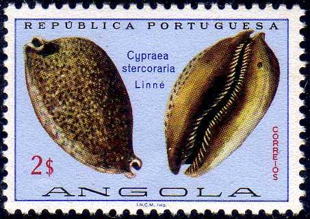 Angola 1974 Sea Shells g.jpg