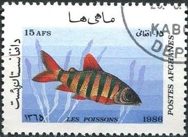 Afghanistan 1986 Fishes f.jpg