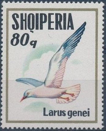 Albania 1973 Sea Birds f.jpg
